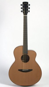 A relative newcomer to the hand made acoustic guitar scene, Baden's A-Mahogany delivered exquisite sound for a surprisingly affordable price.