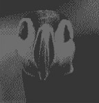 Puffin 2 Bit Dithered