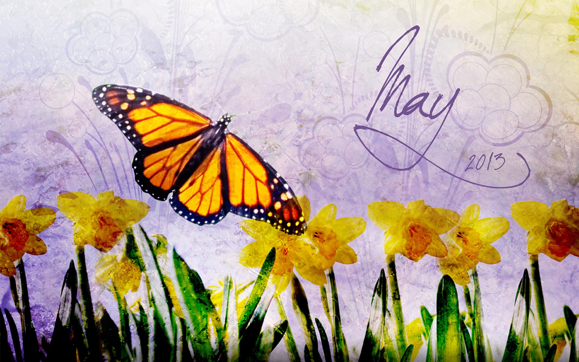May Wallpaper